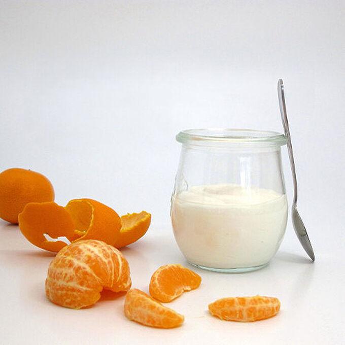 Homemade Custard-Style Yogurt