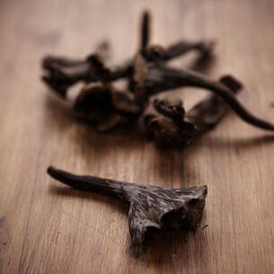 Black Duck with Black Trumpet Mushroom Soil, Black Garlic Puree and Blackened Long Carrots