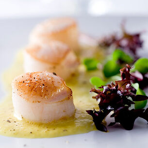 Grilled Sea Scallops with Sweet Corn Coulis