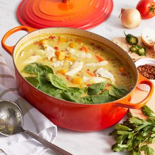 Chicken and Kabocha Squash Stew
