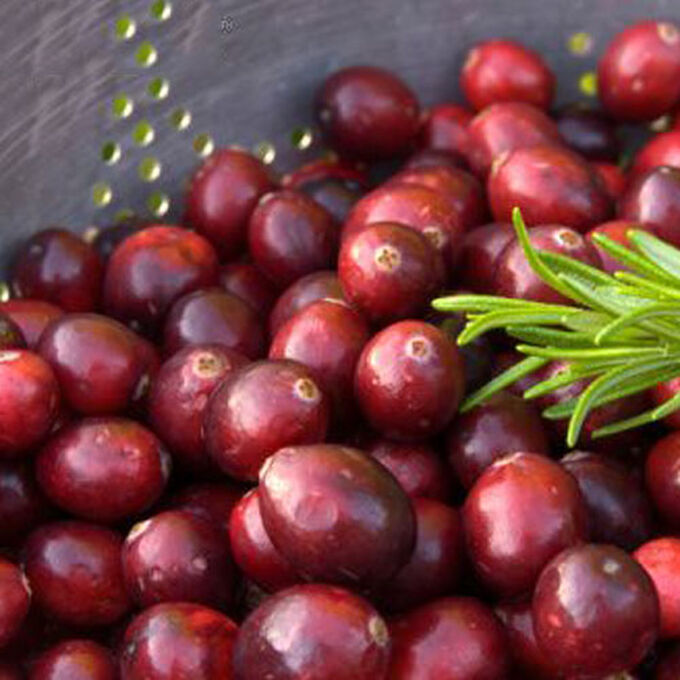 Cranberry Fruit Salad Smoothie