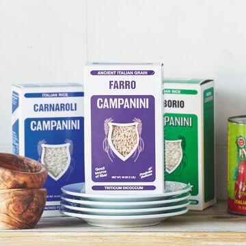 Farro Campanini