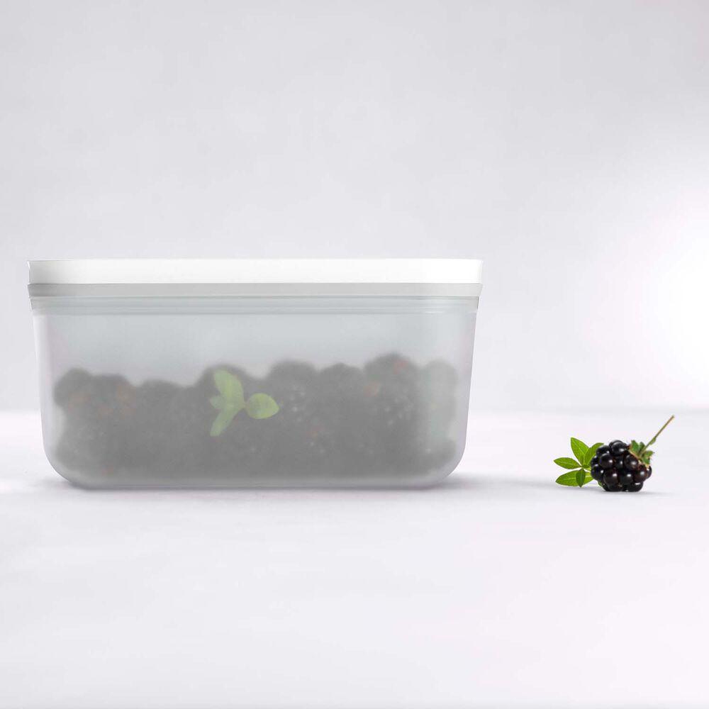 Zwilling Fresh & Save Medium Vacuum Lunch Box, Plastic