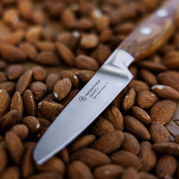 "WÜSTHOF Amici Paring Knife, 3.5"""