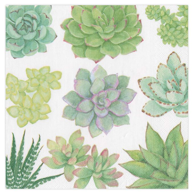Succulents Cocktail Napkins, Set of 20