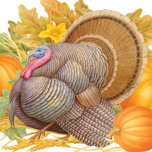 Harvest Turkey Guest Napkins, Set of 15