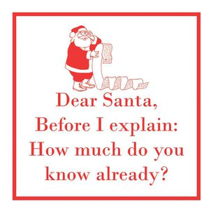 """Before I Explain"" Christmas Paper Cocktail Napkins, Set of 20"