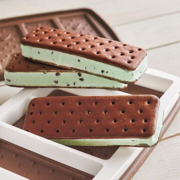 Mint Chocolate Chip Homemade Ice Cream Starter