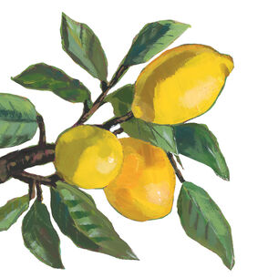 Lemon Cocktail Napkins, Set of 20