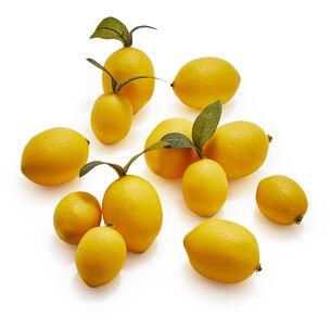 Decorative Lemon Scatter, 12-piece