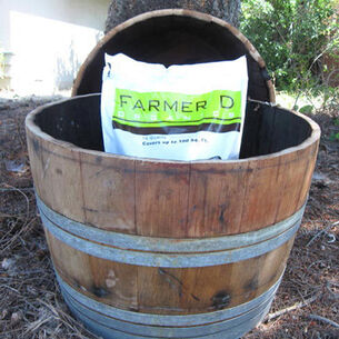 LadyBagsSF Wine Barrel Half-Barrel Planter