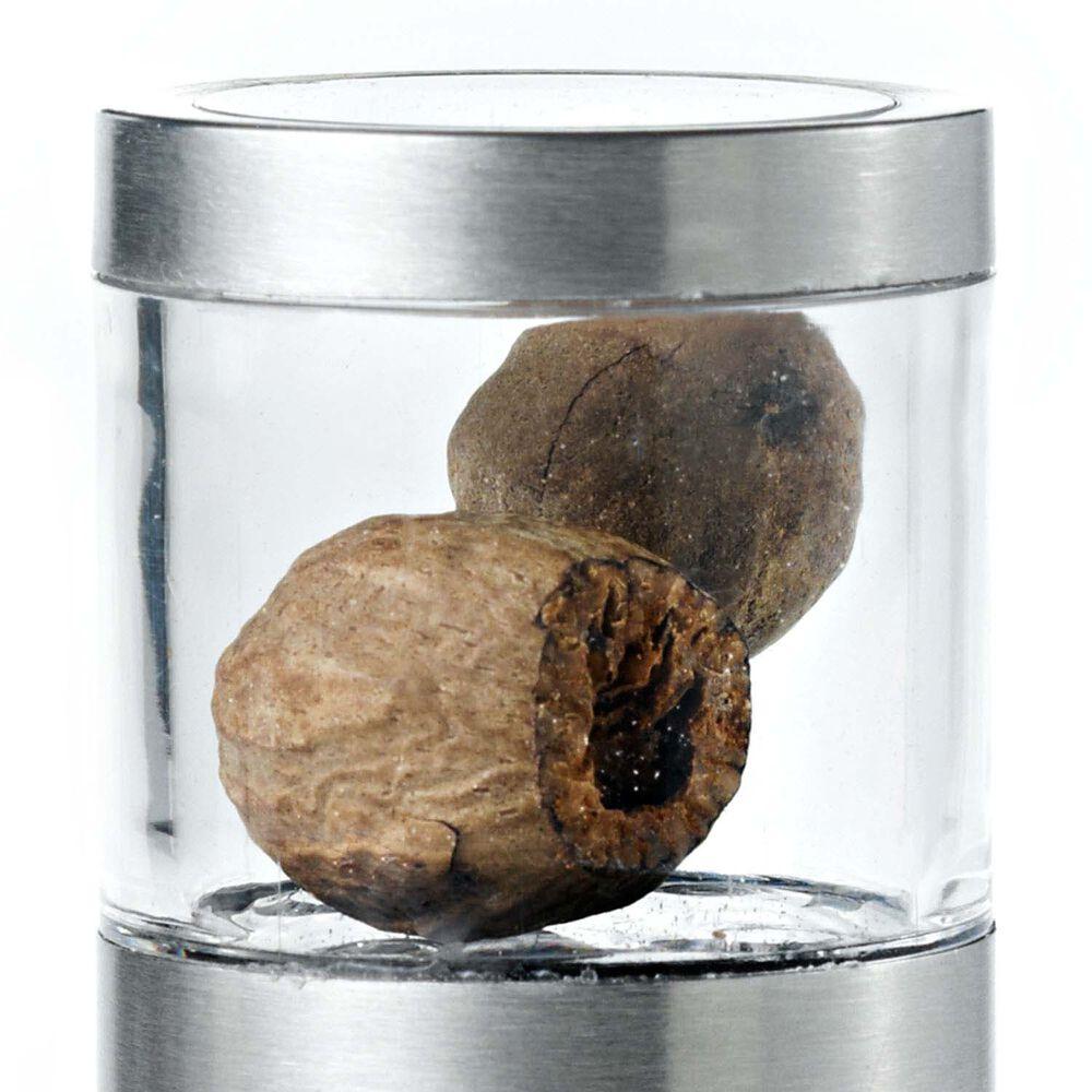 AdHoc Muskatino Nutmeg Mill and Grinder