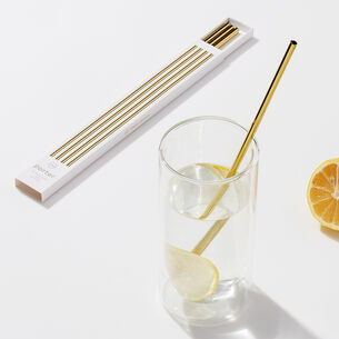 W&P Design Metal Porter Straws