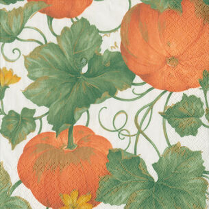 Heirloom Pumpkins Cocktail Napkins, Set of 20
