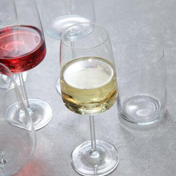 Schott Zwiesel Sensa Stemless Wine Glasses