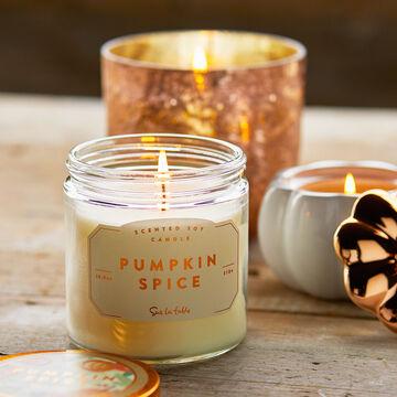 Pumpkin Spice Soy Candle, 10.9 oz.