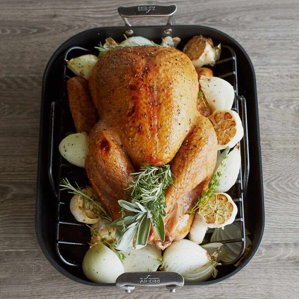 "All-Clad HA1 Nonstick Roasting Pan with Rack, 16"" x 13"""