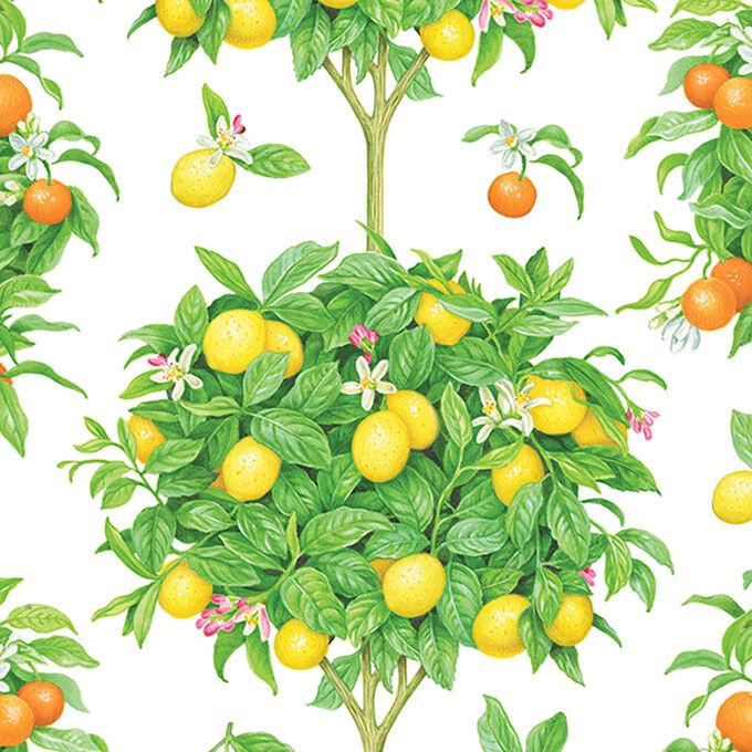 Caspari Citrus Topiaries Guest Napkins, Set of 15