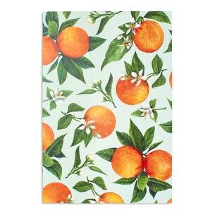 Orange Orchard Placemats, Set of 24