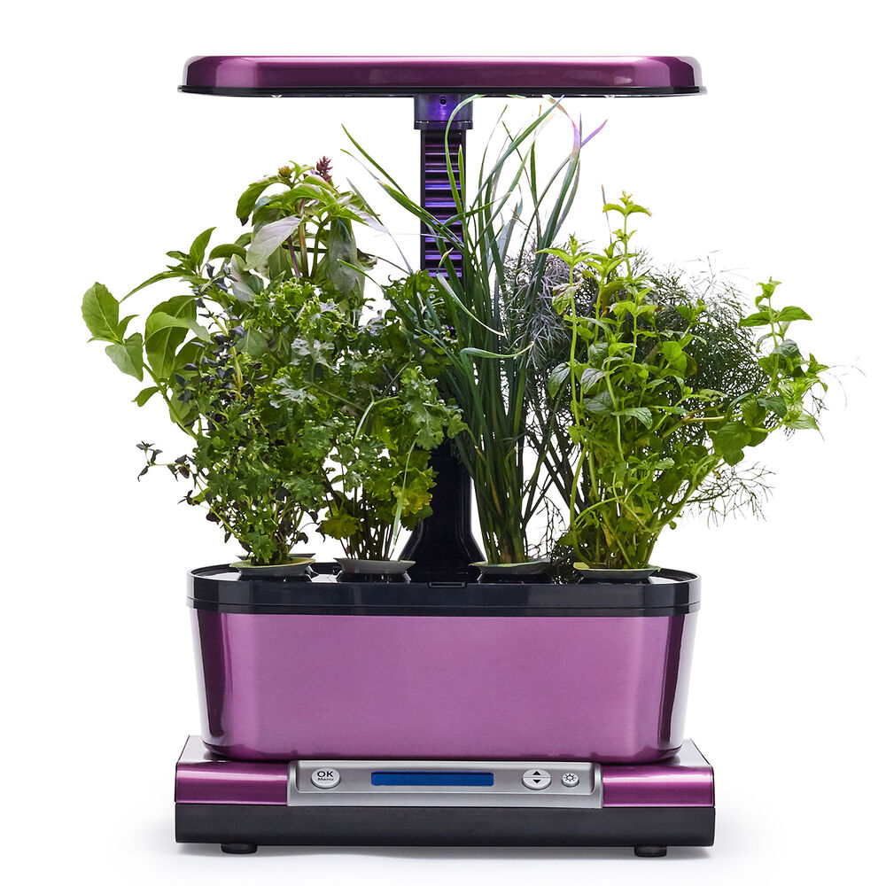 AeroGarden Harvest Elite WiFi with Gourmet Herbs Seed Pod Kit