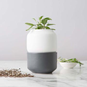 Chef'n Herb Planter