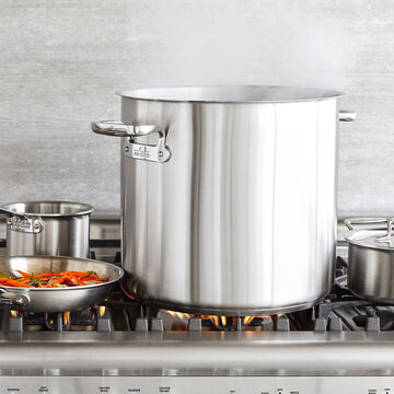 All-Clad Professional Stockpots