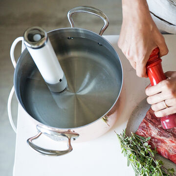 Joule Sous Vide by ChefSteps