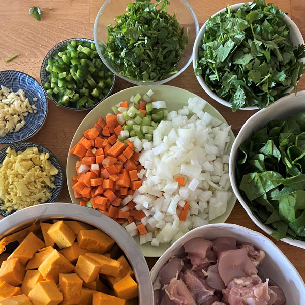 ingredients for Chicken and Kabocha Squash Stew